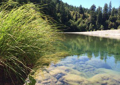 chetco-river-2014c