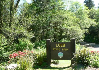 loeb-park-5-07